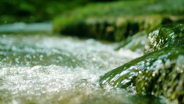 vídeos y material grabado en eventos de stock de slo mo agua de un arroyo en el bosque - spring flowing water