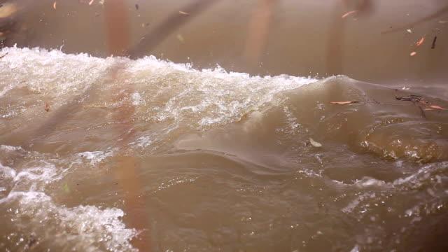 flowing water - sidewalk gutter stock videos & royalty-free footage