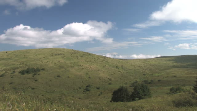 ws fluffy clouds moving, casting shadows over hills - alm stock-videos und b-roll-filmmaterial