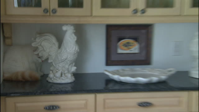 a fluffy white cat hides on a kitchen counter behind a ceramic rooster. - kitchen counter stock videos & royalty-free footage