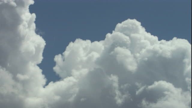 fluffy, white cumulus clouds billow in the blue sky. available in hd. - cumulus stock videos & royalty-free footage