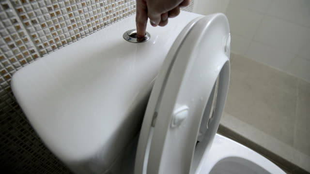flush the toilet - toilet stock videos and b-roll footage