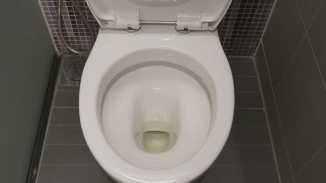 Flushing Down the Toilet