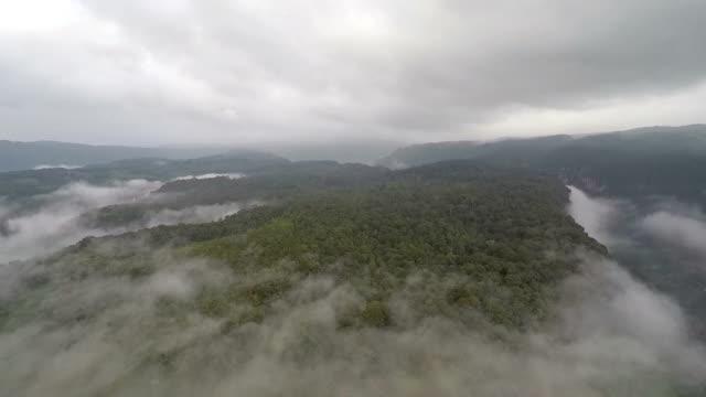 vídeos y material grabado en eventos de stock de fly above sumatran tropical rainforest - isla de sumatra