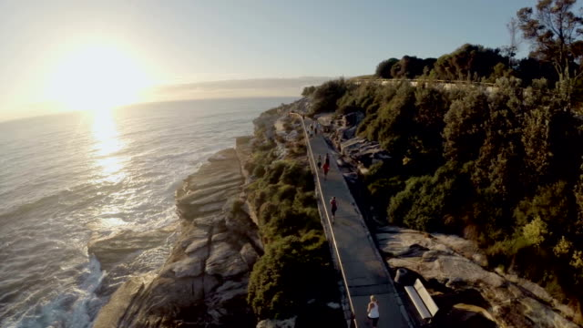 Fly by cliff runners Bondi to Bronte