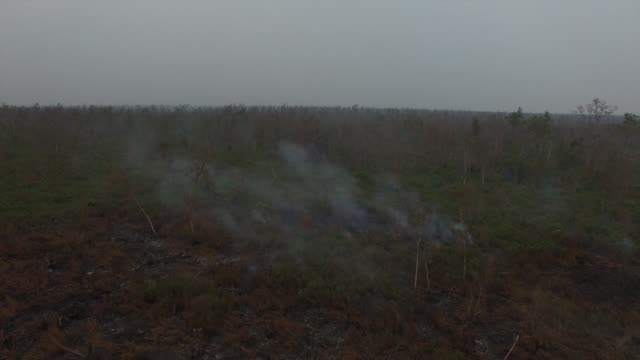 Fly by view of smoke rising from burnt vegetation in this aerial video taken in Ogan Komering Ilir South Sumatra Indonesia on Friday Oct 30 Ascending...
