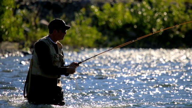fly fisherman casting line - fishing line stock videos & royalty-free footage
