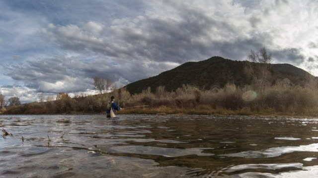 fly fisherman casting timelapse - fly fishing stock videos and b-roll footage