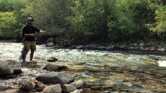 fly fisherman fishing in the san miguel clear mountain river in western colorado - fisher role stock videos & royalty-free footage