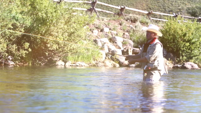 fly fisherman - netting stock videos & royalty-free footage