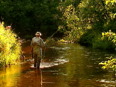 fly fisherman - one mid adult man only stock videos & royalty-free footage