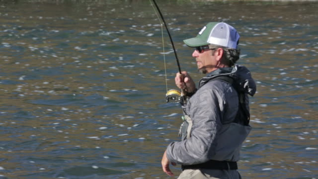 a fly fisherman wades and fishes on the snake river in idaho on a sunny, fall day - snake river stock videos & royalty-free footage