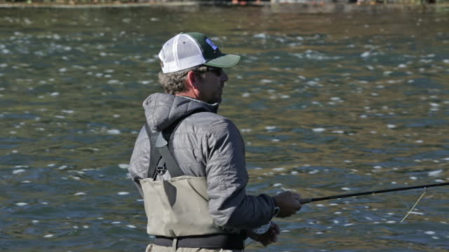 stockvideo's en b-roll-footage met a fly fisherman wades and fishes on the snake river in idaho on a sunny, fall day - snake river