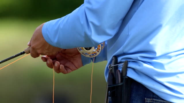 fly fishing angler makes cast - hook stock videos and b-roll footage
