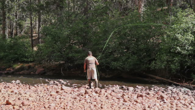 fly fishing - fisherman casting from river bank - fishing line stock videos & royalty-free footage