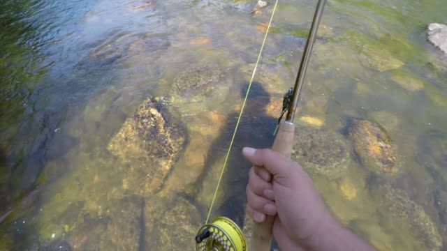 fly fishing in vermont - fishing rod stock videos & royalty-free footage