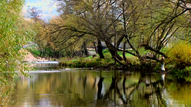 fly fishing on calm river - the hague stock videos and b-roll footage