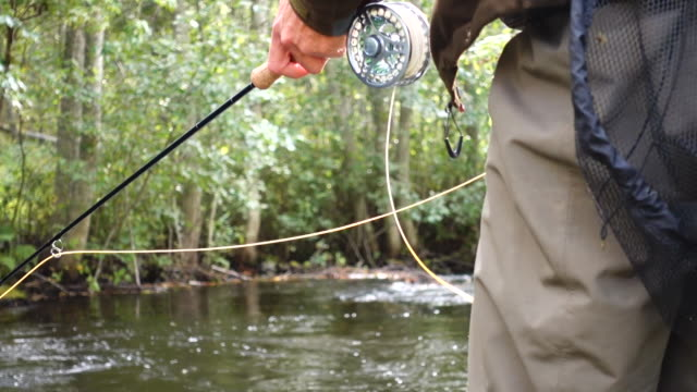 fly fishing sunset river - fishing line stock videos & royalty-free footage