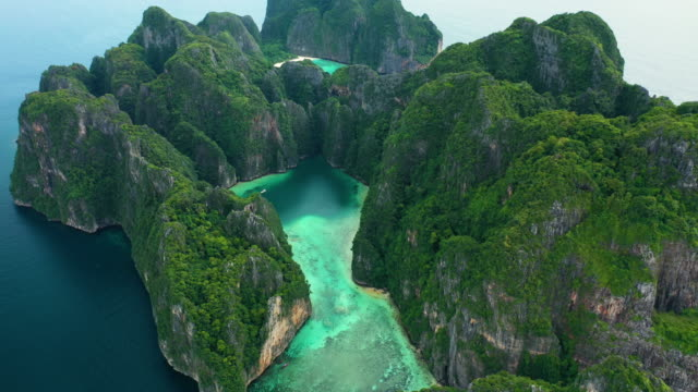 fly forward tilt down of phi phi le, phi phi islands, thailand - tropical tree stock videos & royalty-free footage