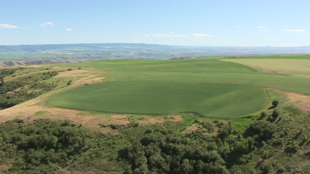 ws aerial fly over fields and hills / spalding, idaho, united states - idaho stock videos & royalty-free footage
