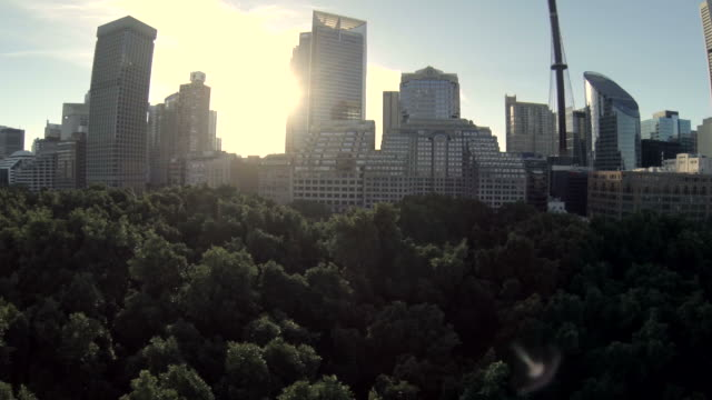 Fly over Hyde Park Sydney tree tops to reveal city
