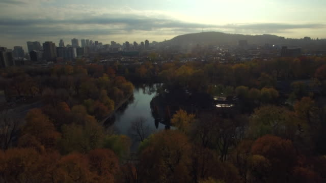 fly over parc lafontaine in montreal during autumn. - montreal stock videos and b-roll footage