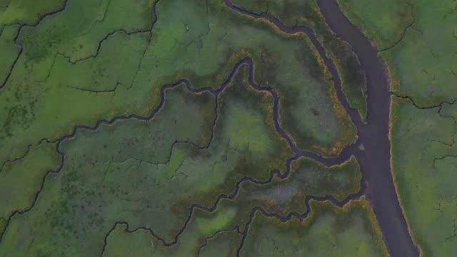 vídeos y material grabado en eventos de stock de fly over wetland on delta canda - río