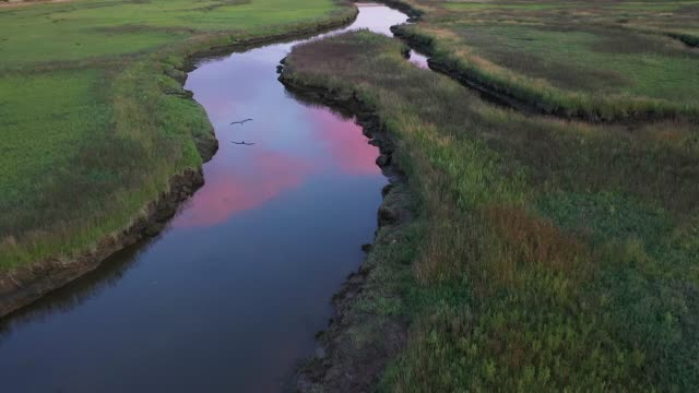 fly over wetland on delta canda - wide stock videos & royalty-free footage