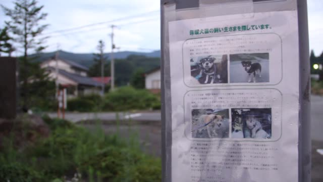 Flyer for lost dog posted on pole in deserted town of Katsurao town in background