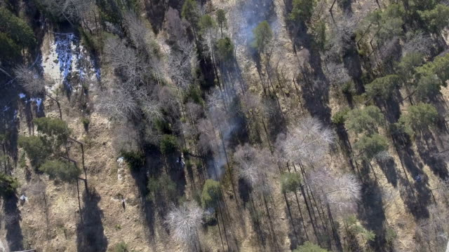 Flying above a fire in the forest