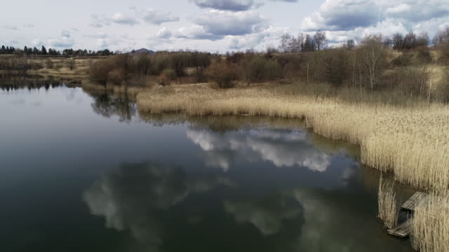 flying above a lake and lakeshore - lakeshore stock videos & royalty-free footage