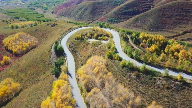 Flying Above Autumn Road