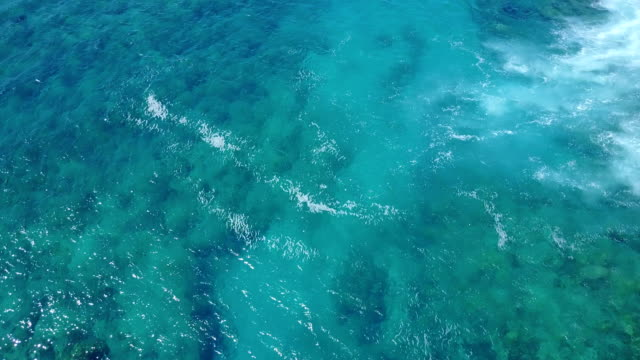 flying above coral reef below clear water on coast of maui - isole hawaii video stock e b–roll
