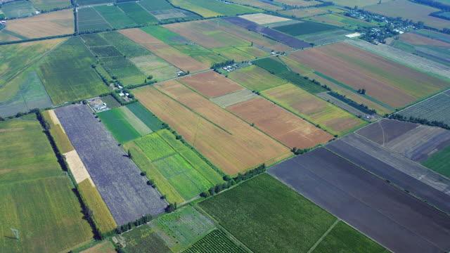 vídeos y material grabado en eventos de stock de flying above cultivated farmland - paisaje mosaico