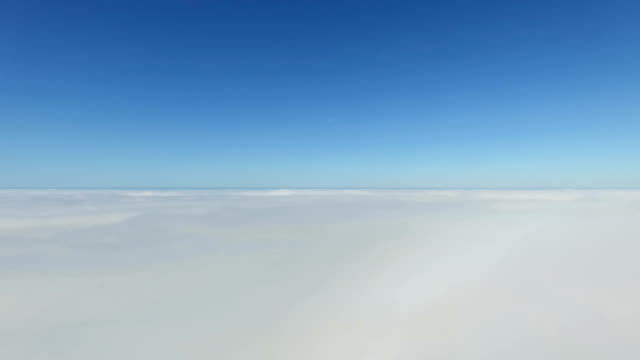 Flying Above Fog Pan Right To The Forest Along The Coastline