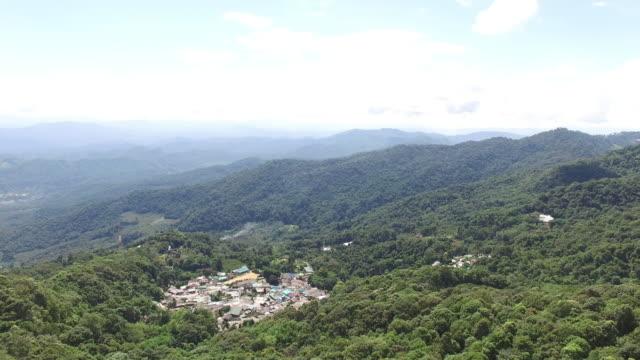 Flying above rainforest