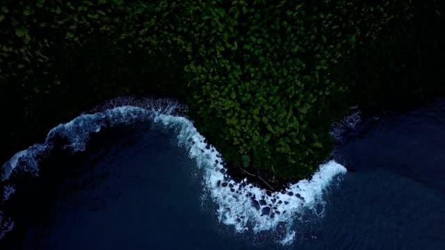 Voler au-dessus la petite crique d'eau et d'épaisses forêts sur l'île de Maui