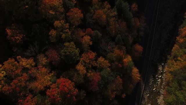 Fliegen über die Farben des Herbstes