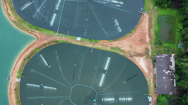 風光明媚な農村のシーンで魚の農場の景色の上を飛ぶ - テナガエビ点の映像素材/bロール