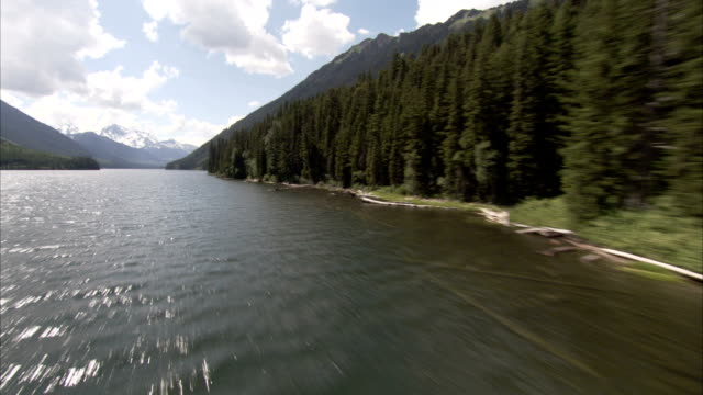 flying along the shoreline of a canadian lake. available in hd. - seeufer stock-videos und b-roll-filmmaterial