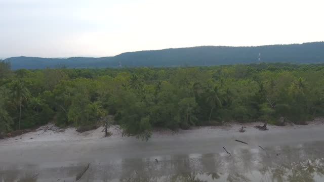 fliegen entlang tropischen meeresstrand systeminfos welle brechen, aerial video - klammer stock-videos und b-roll-filmmaterial