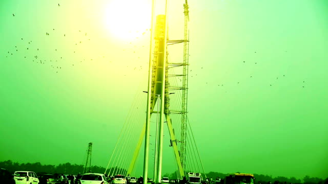 flying birds near signature bridge (cable-stayed bridge), delhi - cable box stock videos & royalty-free footage