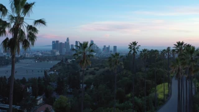 vídeos de stock, filmes e b-roll de vôo por palmeiras sobre uma rua de los angeles - cidade de los angeles