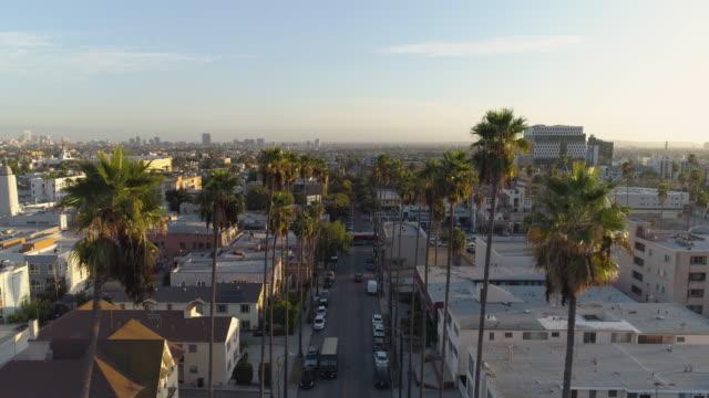 Überfliegen von Palmen a Los Angeles Street