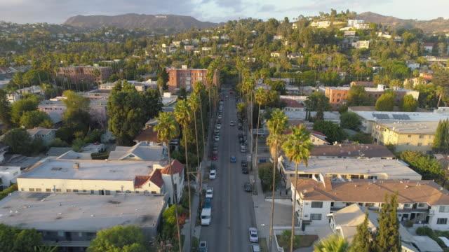 ヤシの木に飛んでロサンゼルス通り