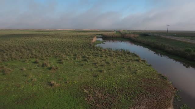 Flying by swamp water near road - Drone Aerial 4K Everglades, Swamp bayou with wildlife alligator nesting Ibis, Anhinga, Cormorant, Snowy Egret, Spoonbill, Blue Heron, eagle, hawk, cypress tree 4K Nature/Wildlife/Weather