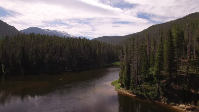 flying down colorado river pan around trees - drone aerial video 4k colorado rocky mountains, colorado river, mountain dam at lake granby, beautiful water reflection, spring, pristine water, foliage, wildlife aspen trees 4k nature/wildlife/weather - river colorado stock videos & royalty-free footage