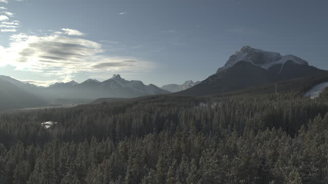 flying from below trees up high in rocky mountains - valley stock videos & royalty-free footage