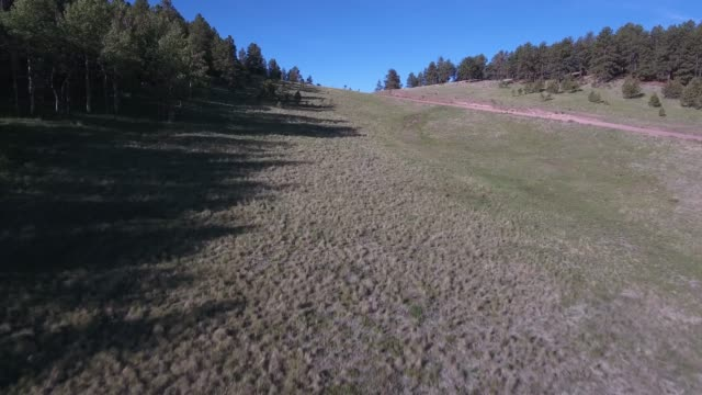 flying low down valley up over trees to reveal ranch and valley .mov - appaloosa stock videos and b-roll footage