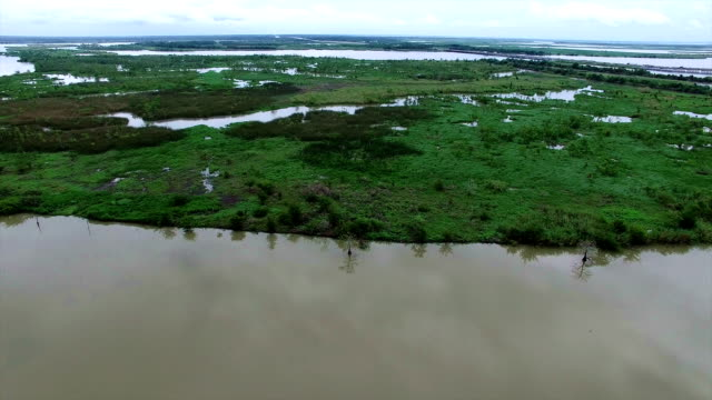 Flying low over Swamp and Wetland River system called Old River and Lost Lake in the bayou